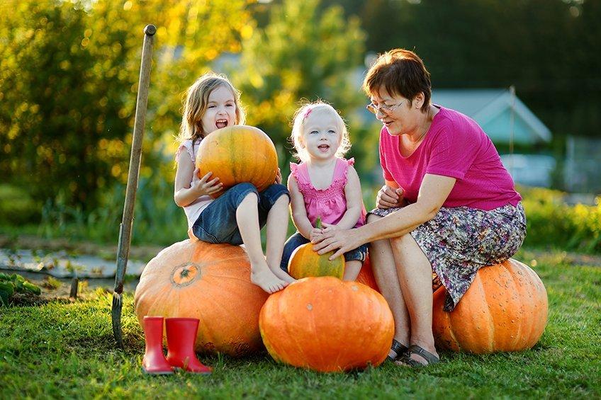 Pumpkin Activities To Enjoy With Your Grandkids